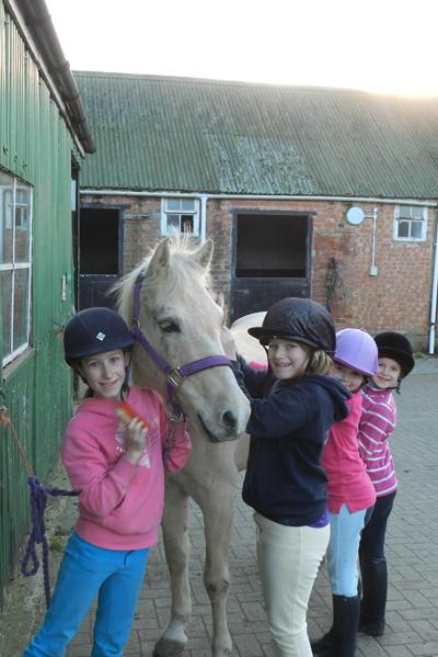 pony-centre-1